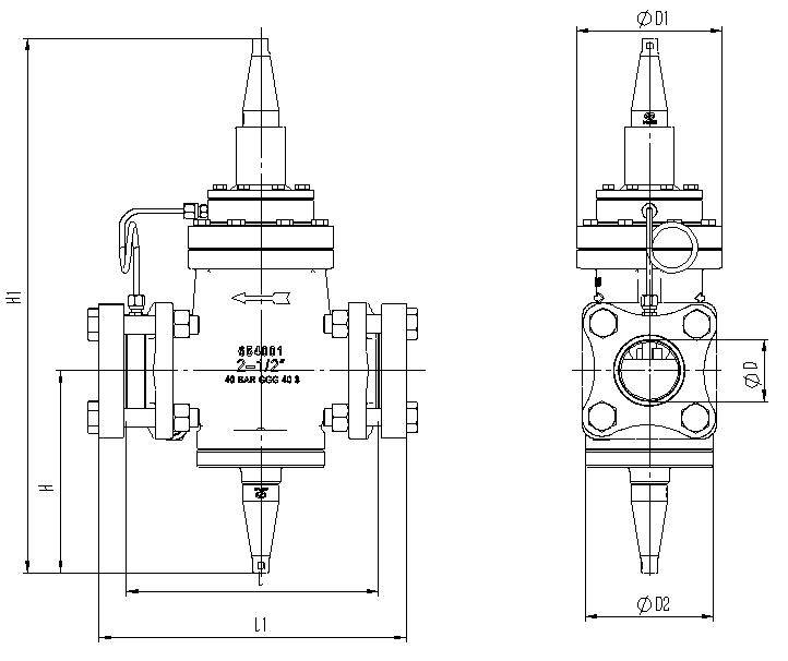 IPRV Series Outlet Pressure Regulator